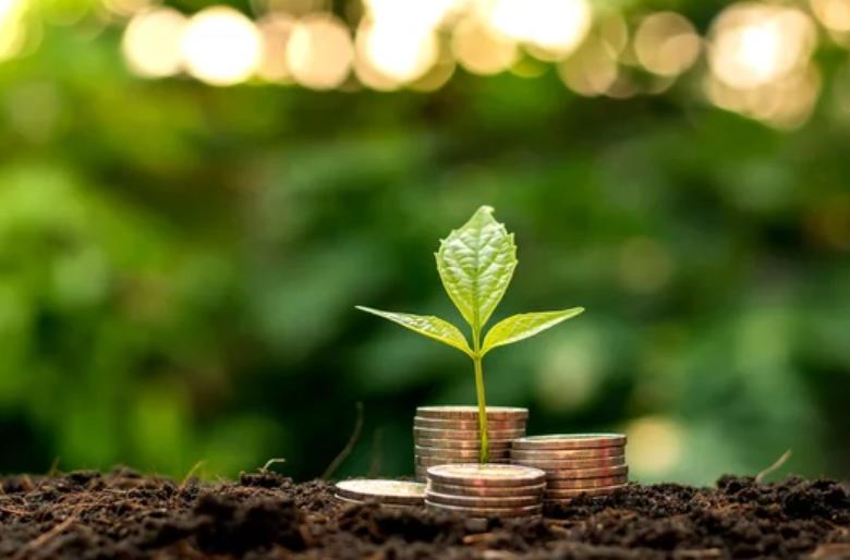 petit-investissement-sans-risque1